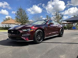 Top Auto Modelle: Ford Mustang Gt Royal Crimson