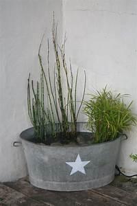 ma petite fontaine avec papyrus prele et jacinthe d39eau With ordinary fontaine exterieure de jardin moderne 3 mon jardin aquatique