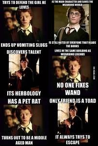 24 Harry Potter Memes We Need Fun
