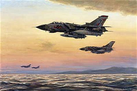 aviation art wong ronald maritime patrol