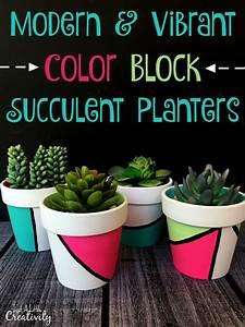 Modern  U0026 Vibrant Color Block Succulent Planters