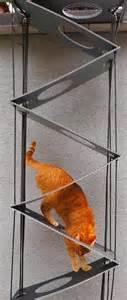 cat ladder cat ladders