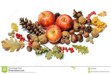 composition des fruits d 39 automne photo stock image 58688085