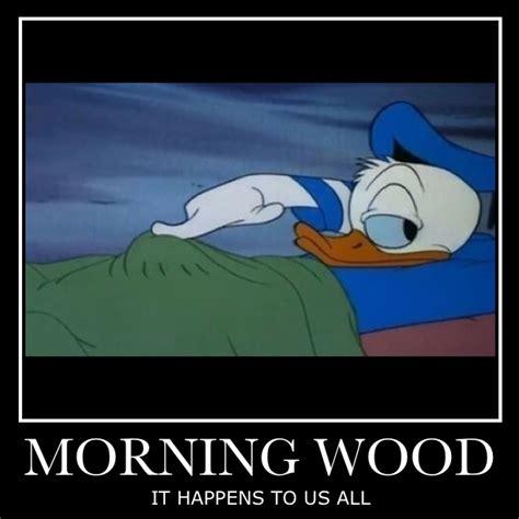 Morning Wood Meme - morning wood meme 28 images for those girls who take care of morning wood you re the waking
