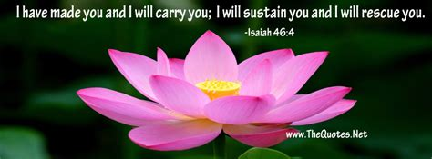 facebook cover image images  bible tag thequotesnet