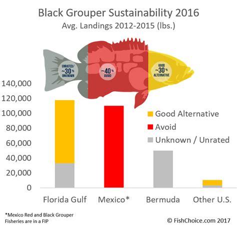 grouper sustainability mexico global landings average based