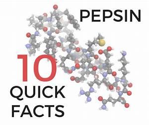 Pepsin  10 At    Peptest Blog