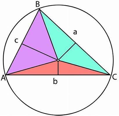 Triangle Circumcenter Triangles Circle Circumscribed Area Log