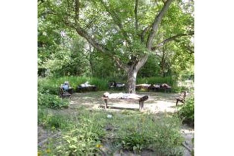 Botanischer Garten Oberholz botanischer garten oberholz 60plusminus