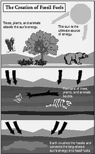 10 differnt types of fossil fuels