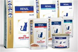 Royal canin launches new renal diets vet times for Royal canin renal support letters