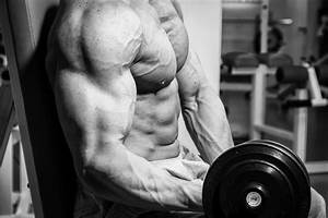Trenbolone Steroid And The Best Alternatives