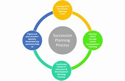 Succession Planning Plan Process Sap Define Succeed