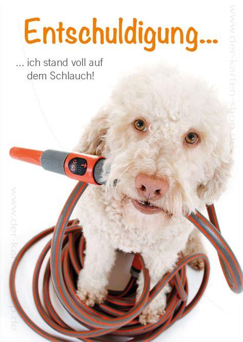 postkarte grusskarte entschuldigungskarte hund
