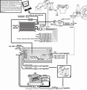 18 Popular Msd Digital  Pn 6425 Wiring Diagram Collections