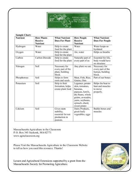 grade 2 school garden lesson plan soil lesson plant