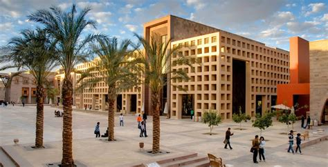 american university  cairo  degrees consulting