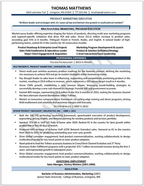 executive director non profit resume executive director resume sle non profit resume sles