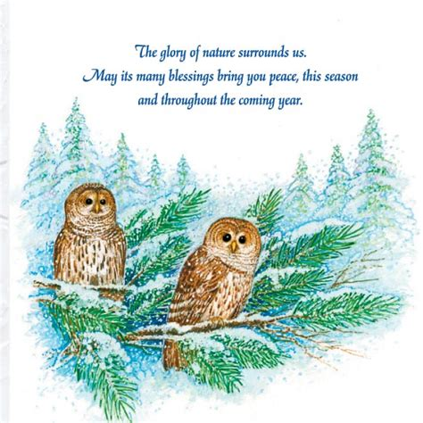 barred owl merry christmas card of 20 animal nature inspired mileskimball