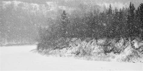 Black And White Snow Wallpaper Wallpapersafari