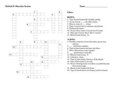 14 best images of labeling worksheet high school