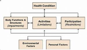 Framework Of Functioning  Disability And Health  Icf And