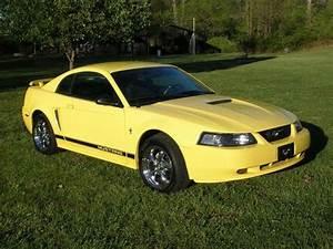 kingdustin 2002 Ford Mustang Specs, Photos, Modification Info at CarDomain