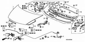 Civic Sedan   Clip  Fuel Lid Opener