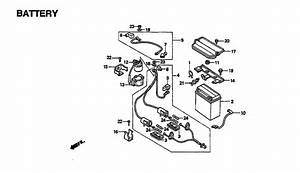 1999 Honda 300 Fourtrax Parts Diagram  U2022 Downloaddescargar Com