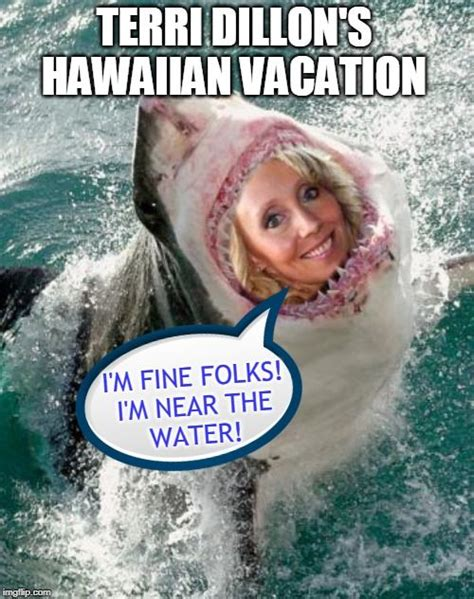 Custom Image Hawaiian Vacation Custom Images Memes