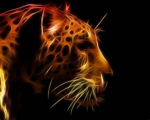 Cool Animal Wallpapers - Wallpaper Cave