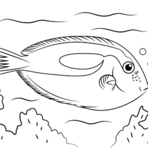 pesce da colorare per bambini migliori pagine da colorare nella categoria pesce