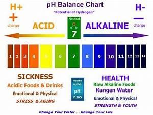 List Of Alkaline Foods The Ph Balanced Diet In5d