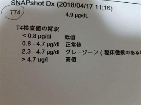 肝臓 の 数値 を 下げる レシピ