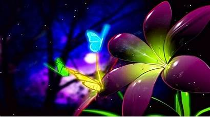 Butterfly Animated Desktop Wallpapers Backgrounds Animation Neon