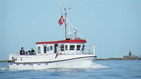Ferry Boat Gif by Seal Safari On The Boat Seadog And Ferry Ticket Visitlaesoe