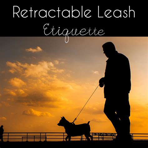 Retractable Leash Dangers And Etiquette This  Ee  Pug Ee   Life
