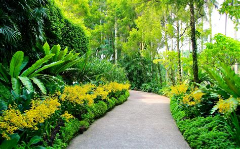 Garden Picture Hd by Hd Scenery Wallpapers