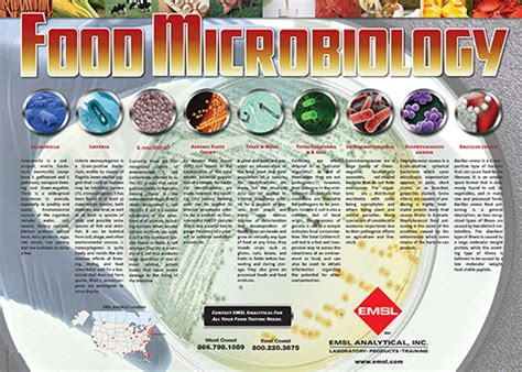 food microbiology poster