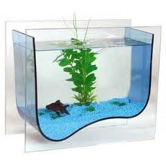 surf line decorative aquarium kit 5l on sale free uk delivery