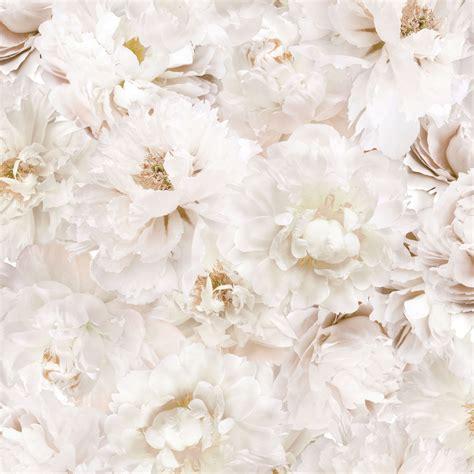 graham brown white flowers cream floral wallpaper