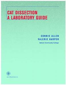 Cat Dissection Lab Manual  Pdf       Cf Edliostatic Com