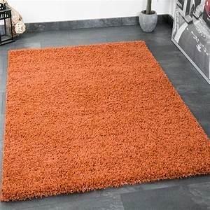 shaggy a poils longs tapis moderne salon tapis monochrome With tapis couloir avec kit coloration canapé cuir