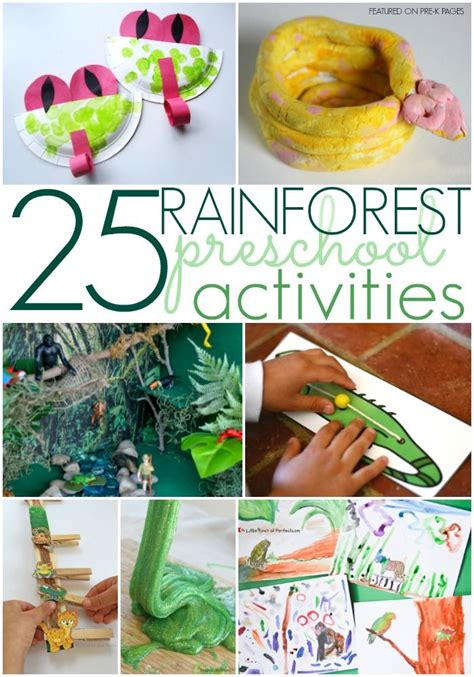 rainforest activities for preschoolers rainforest theme 112 | 8e6acddba4e1e58135910a301b848641