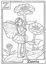 Flower Zinnia Drawing Coloring Fairy Letter Getdrawings sketch template