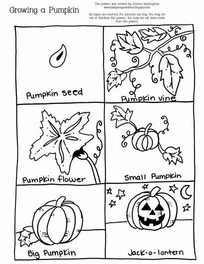 Pumpkin Sequencing Halloween Growth Kindergarten Sheet Activities