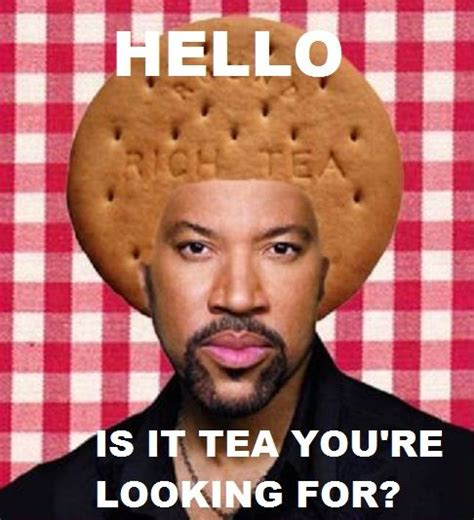 Lionel Richie Meme - 29 best images about lionel richie on pinterest what would baby frame and funny baby showers