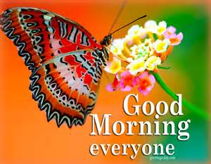 morning everyone best cards gifs wishes
