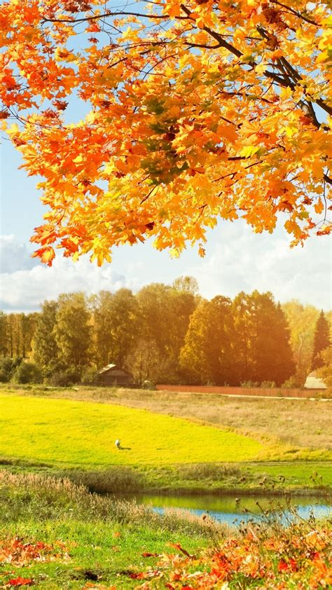 Hd Autumn Background by Autumn Hd Wallpapers For Pixel Xl Wallpapers Pictures