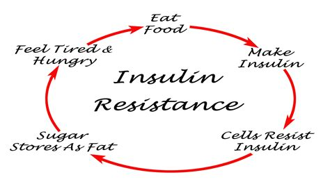 insulin resistance  weight gain